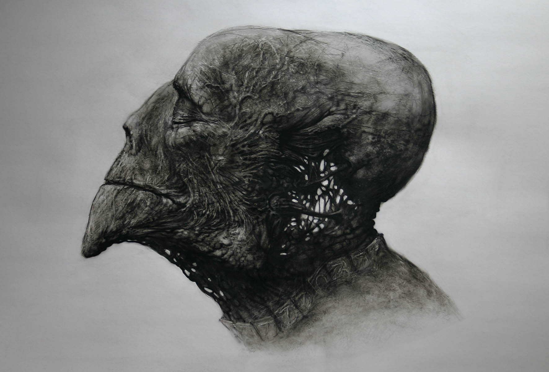 Dariusz Zawadzki - Organic head